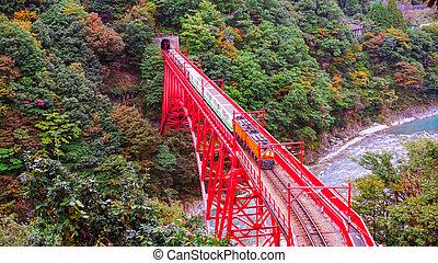 train on red bridge cross the river