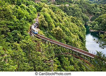 Train on the Alps, near Locarno, Switzerland