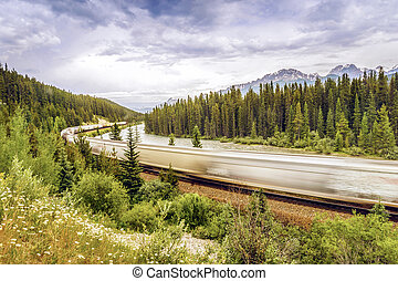 Train passing by Banff National Park, Alberta, Canada