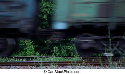 Train Rides on Rails
