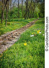 train tracks and flowers
