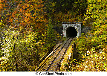 Train tunnel - Old brick tunnel in the mountains in autumn