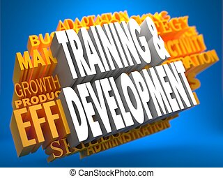 Training and Development. Wordcloud Concept.