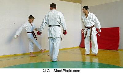 training martial arts - Martial arts instructor training...