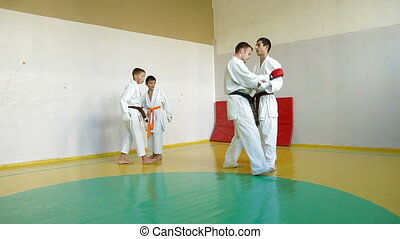 training martial arts in gym - Martial arts instructor...