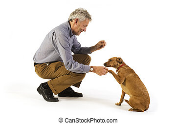 training obedience - man is dog training obedience