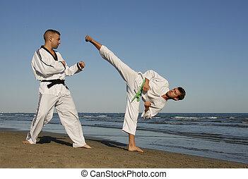 training of taekwondo