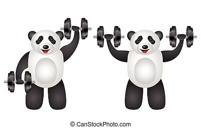 training panda set