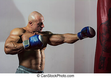 training., pugilista, muscular, forte