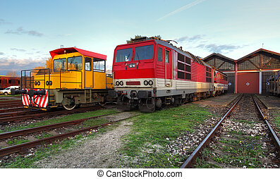 Trains in depot - Two trains in depot at a day