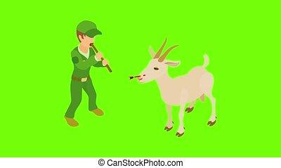traitement, animaux familiers, animation, icône