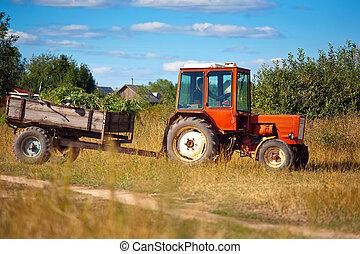 traktor, äng