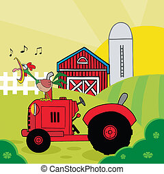 traktor, gaworząc, kogut