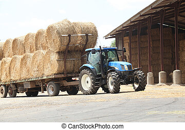 traktor, med, hö
