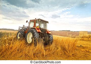 traktor, på, fält