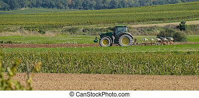 traktor, pflügen, der, felder
