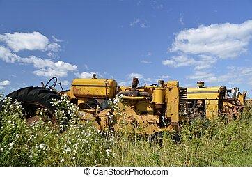 traktorer, gräs, gul, länge