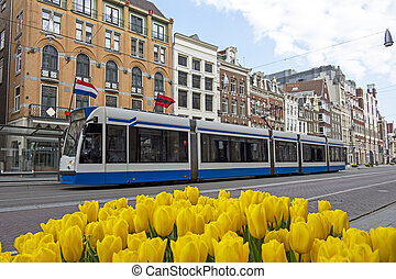 Tram driving on an empty Rokin in Amsterdam the Netherlands during the corona crisis