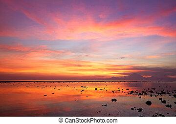 tramonto, a, il, corallo, spiaggia