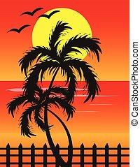tramonto, a, spiaggia, fondo