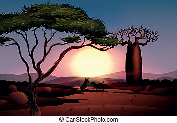 tramonto, animali, due, deserto