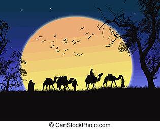 tramonto, deserto sahara