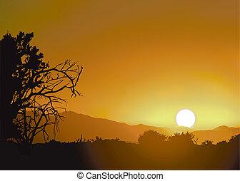 tramonto, e, regione selvaggia