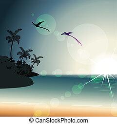 tramonto, estate, trasparenza