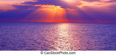 tramonto, golfo, messico