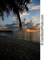 tramonto, in, maldive