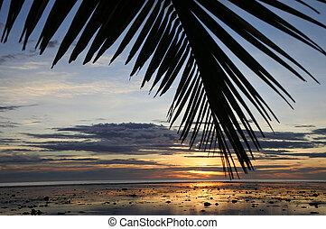 tramonto, paesaggio, vista, di, il, corallo, costa, figi