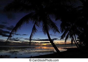tramonto, paesaggio, vista, di, uno, spiaggia, in, il, corallo, costa, figi