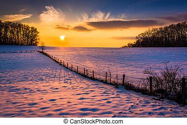 tramonto, sopra, uno, recinto, in, uno, neve coprì, campo azienda agricola, in, rurale, carroll, contea, maryland.