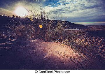 tramonto, spiaggia, in, inverno