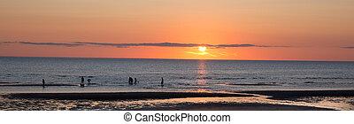 tramonto spiaggia, su, merluzzo capo