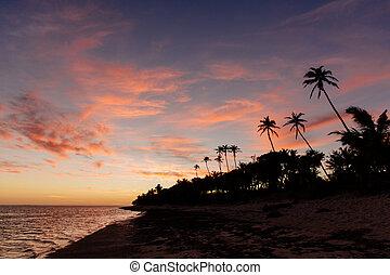 tramonto, su, il, corallo, costa, di, figi