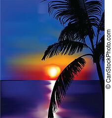 tramonto, su, mare, con, palm., vettore