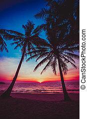 tramonto, tropicale, bello, spiaggia.