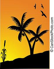 tramonto, uccelli, palme