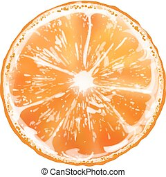 tranche orange, vecteur
