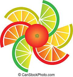 tranches, orange, citron, pamplemousse, chaux
