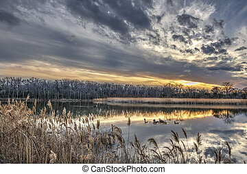 Tranquil Chesapeake Bay pond during Winter at sunset -...