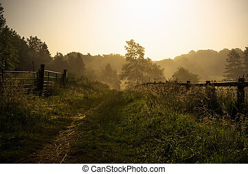 Misty morning footpath through fields