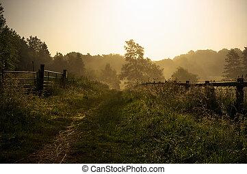 Tranquil English footpath - Misty morning footpath through...