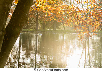 Tranquil misty pond with colorful autumn trees