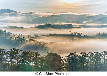 Tranquil mountain and forest scenery in foggy morning sunrise