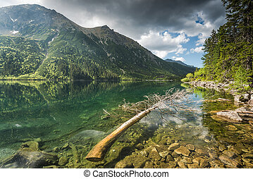 tranquil nature at lake in mountains