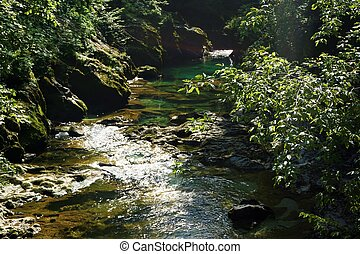 Tranquil part of Radovna river in the Vintgar Gorge,...