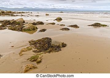 Tranquil scene at Criccieth beach in low tide