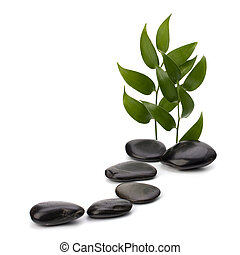 Tranquil scene. Green leaf and stones isolated on white...